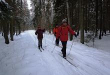 Narty biegowe w Biebrzańskim Parku Narodowym